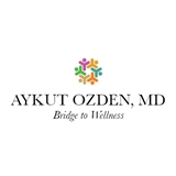 BRIDGE TO WELLNESS
